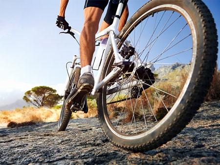 Assicurazione Bici da Corsa